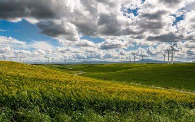 Klimapolitik: Ausbau der Erneuerbaren und Wasserstoff für die Deutschen am wichtigsten