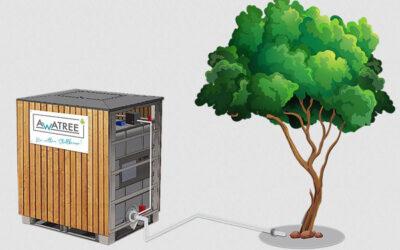 Intelligente Bewässerung von Stadtbäumen